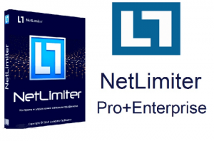 NetLimiter Pro 4.0.59 activation key